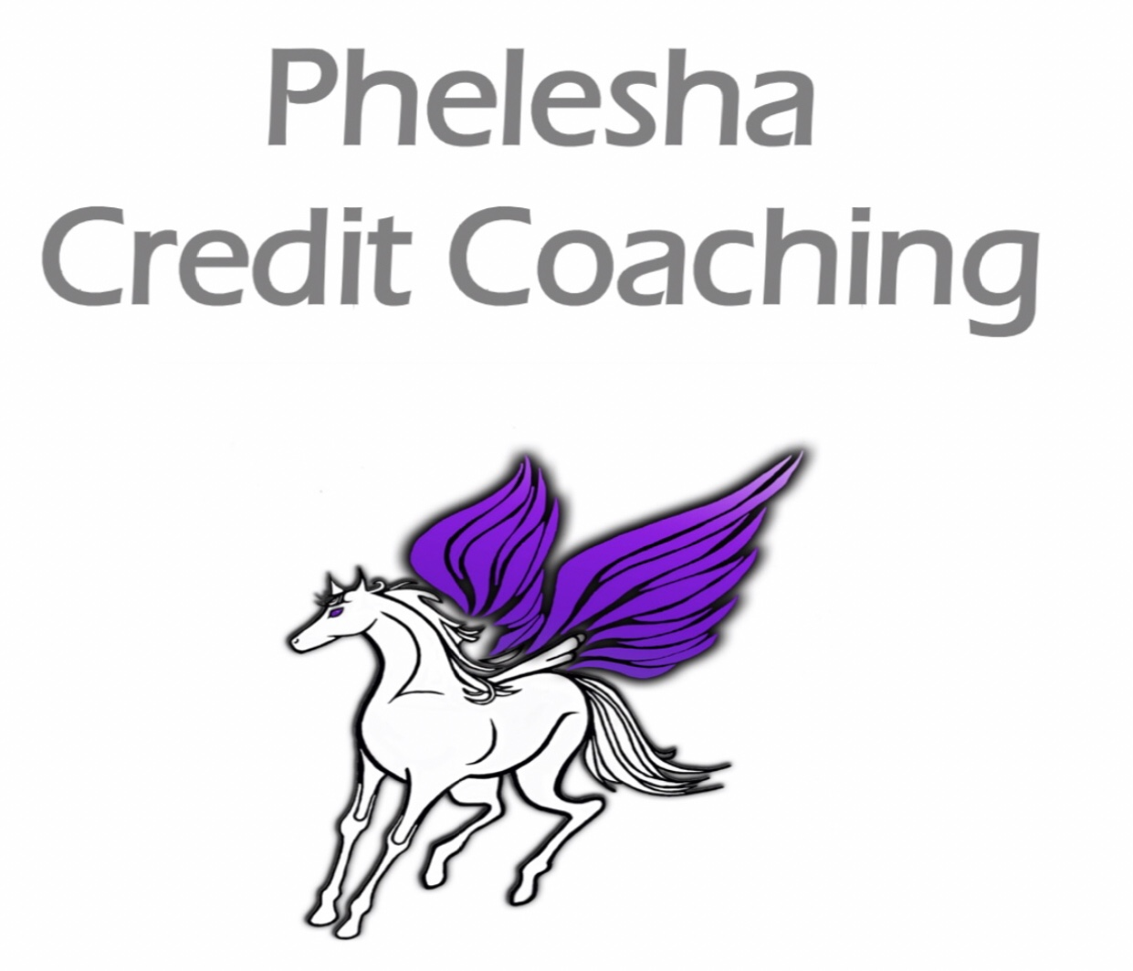 Phelesha Credit Coaching